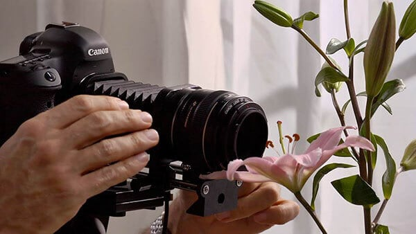 Photography Foundations - Macro and Close-Up course