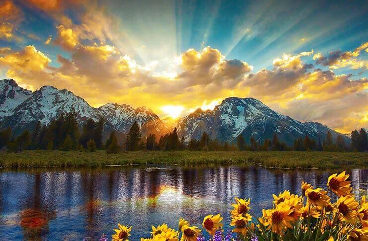 Nature At Its Most Beautiful