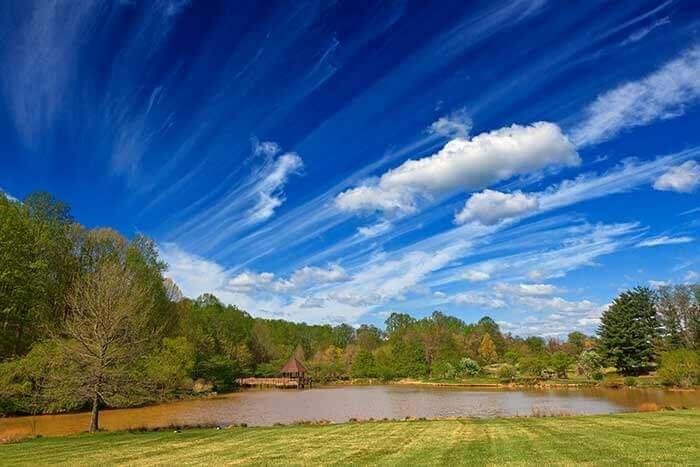 Meadowlark Gardens Revisited HDR