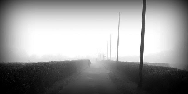 Into the Mist 2 by Jayt74
