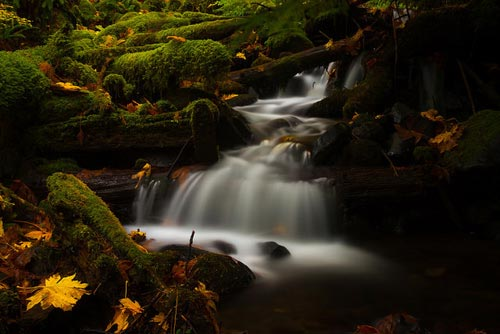 Neutral Density Filter - Dry Creek Color by Luke Detwiler