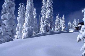 10 Snow Photography Tips White balance